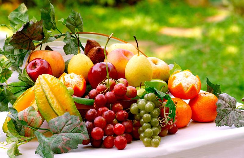 Ăn đầy đủ trái cây giúp người tập luyện đạt được hiệu quả nhanh nhất
