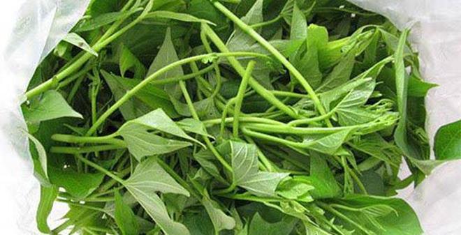 Rau lang, tác dụng của rau lang, tác dụng chữa bệnh của rau lang