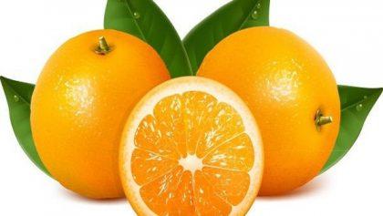 Tìm hiểu tác dụng của cam với sức khỏe