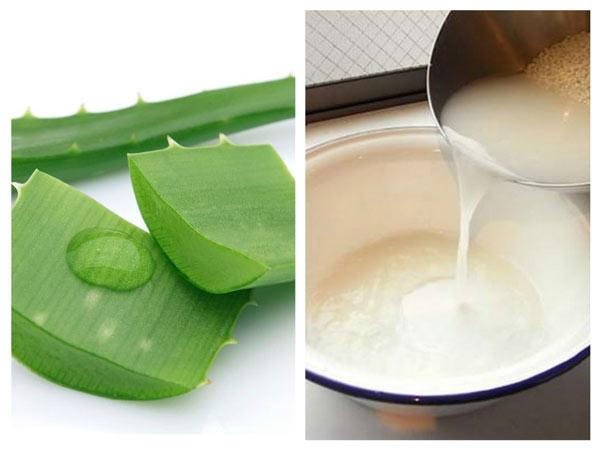 Hỗn hợp trị mụn nha đam và nước vo gạo