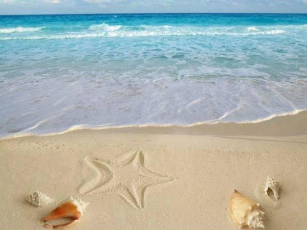 Mơ thấy bãi biển